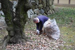 できるだけ落ち葉を拾おうと、細かなところは直接手で落ち葉を拾います。