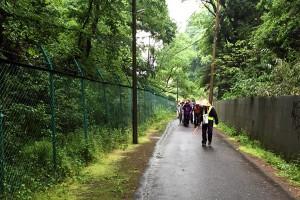 東山入りの細い道。歩行者専用です。