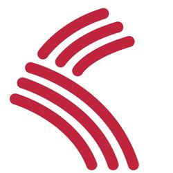 教区御遠忌ロゴマーク 3本の線は、長浜教区・五村別院・長浜別院を表し、宗祖親鸞聖人の教えが過去から現在、そして未来への絶えることなく受け継がれる「法義相続」を流れる川で表現されています。